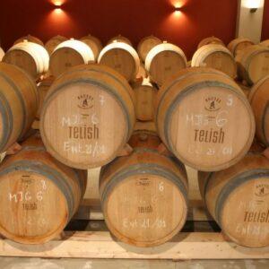 Barriques des bulgarischen Weingutes Telish