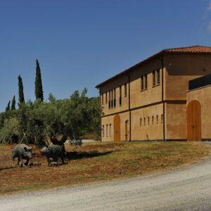 Monteverro-Weingut