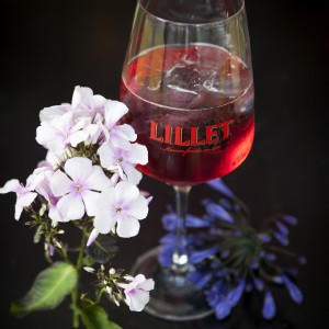 Lillet_DarkBerry