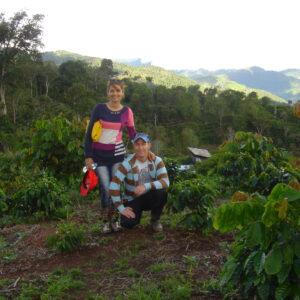 Peru Kaffeefarm Tropical Mountains