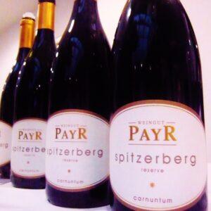 Spitzerberg-Blaufraenkisch-Payr-002