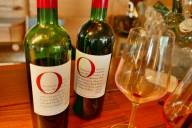 Malbec Pinot Noir Neue Welt Kutch 003 (1024x856)