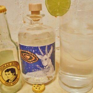 vetterhof-gin-im-tonic-800x600