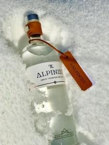 The Alpinist (600x800)