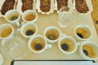 Kanzi Bürokaffeetest quer