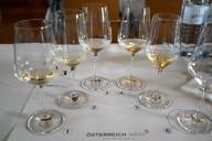 SALON Wein Österreich 19 Flights süss quer