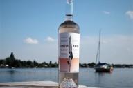 Bon Jovi Hampton Water quer