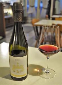 Mehofer Pinot Noir vom Löss hoch