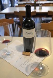 Salzl Cabernet Franc 2017 hoto