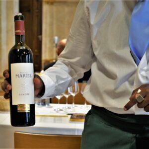SALON Österreich Wein 2020 Condre Mariell quer