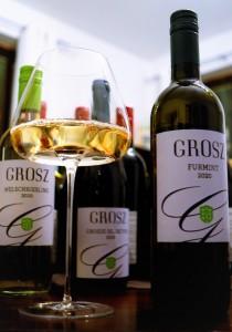 Weingut Grosz Gnas Furmint Südburgenland hoto