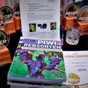 Piwi pioneering wines quer